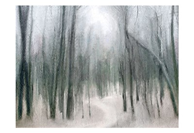 Shrouded Forest Poster by Kimberly Allen for $22.50 CAD