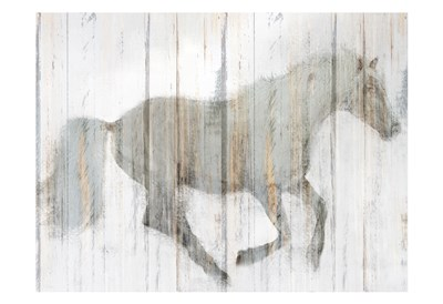 Whitewash Horse Poster by Kimberly Allen for $22.50 CAD