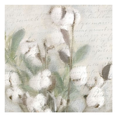Soft Cotton 2 Poster by Kimberly Allen for $18.75 CAD