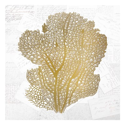 Gold Coral 4 Poster by Kimberly Allen for $18.75 CAD
