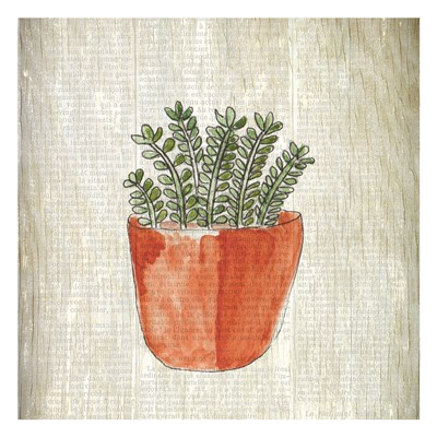 Spring Cactus 2 Poster by Kimberly Allen for $18.75 CAD
