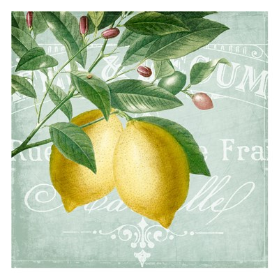 Lemon Drop 2 Poster by Kimberly Allen for $18.75 CAD
