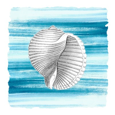 Coastal Brushstroke 1 Poster by Kimberly Allen for $18.75 CAD