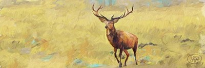 Beau Stag Poster by Sarah Butcher for $18.75 CAD