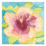 Sunset Hibiscus I