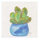 Cactus Pot I