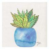 Cactus Pot II