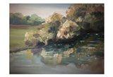 Landscape River 1
