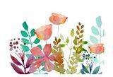 Florals 5