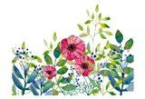 Floral field III