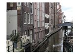 Swan Amsterdam
