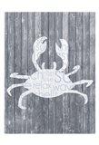 Crab Wood Panel