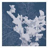 Sea Coral 2