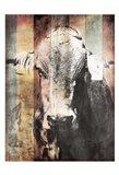 Miultiwood Vintage Cow