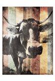 Miultiwood Vintage Cow Mate