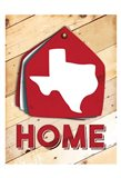 Texas Home Swatch