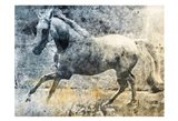 Washed Out Horse
