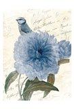 Bird Mail Three