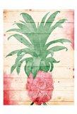 Pineapple Pink Henna