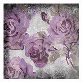 Purple Grey Flowers