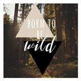 Born To Be Wild 38