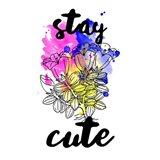 Stay Cute Splash