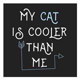 Cooler Cat