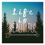 Insta Life Is Beautiful