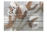 On the Farm A