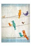 Birds of Spring 2