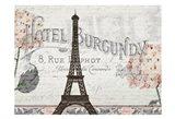 Hydrangea Paris Grey 3