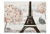 Hydrangea Paris Grey 4