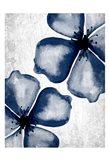 Navy Blooms 2