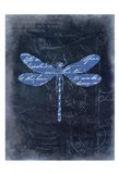 Dragonfly Blue 1