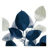 Midnight Leaves 1