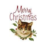 Cat Christmas 4