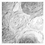 Paper Roses Grey 2