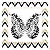 Zig Zag Butterfly 1