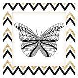 Zig Zag Butterfly 2