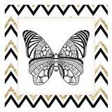 Zig Zag Butterfly 3