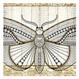 Damask Butterfly 3