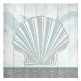 Sea Shell C