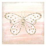Butterfly Script 2