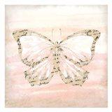 Butterfly Script 4