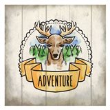 Adventure Is Out There 1