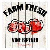Farm Fresh 3