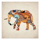 Elephant Orange 1