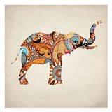 Elephant Orange 3