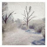 Winters Tale 1