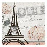 Hydrangea Paris Grey  1